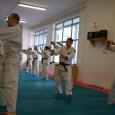 Az első edzés 2012 szeptember 4-én kedden lesz a Honvédban, 19:00 órai kezdettel. Az edzések időpontjai változatlanok K-CS-P 19 órától.