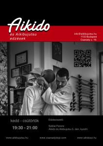 AikibujutsuFlyer160110